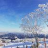 北海道旅行三日目 サッポロテイネスキー場