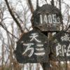 【百名山45座目・静岡県】天城山 紅葉か新緑の5月がオススメ